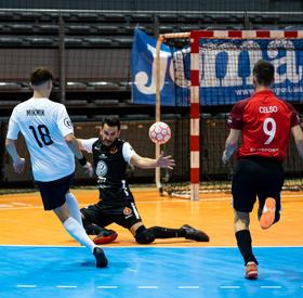 J4 : Toulouse Métropole - Toulon Elite (4-4)