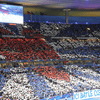 Supporters Equipe de France