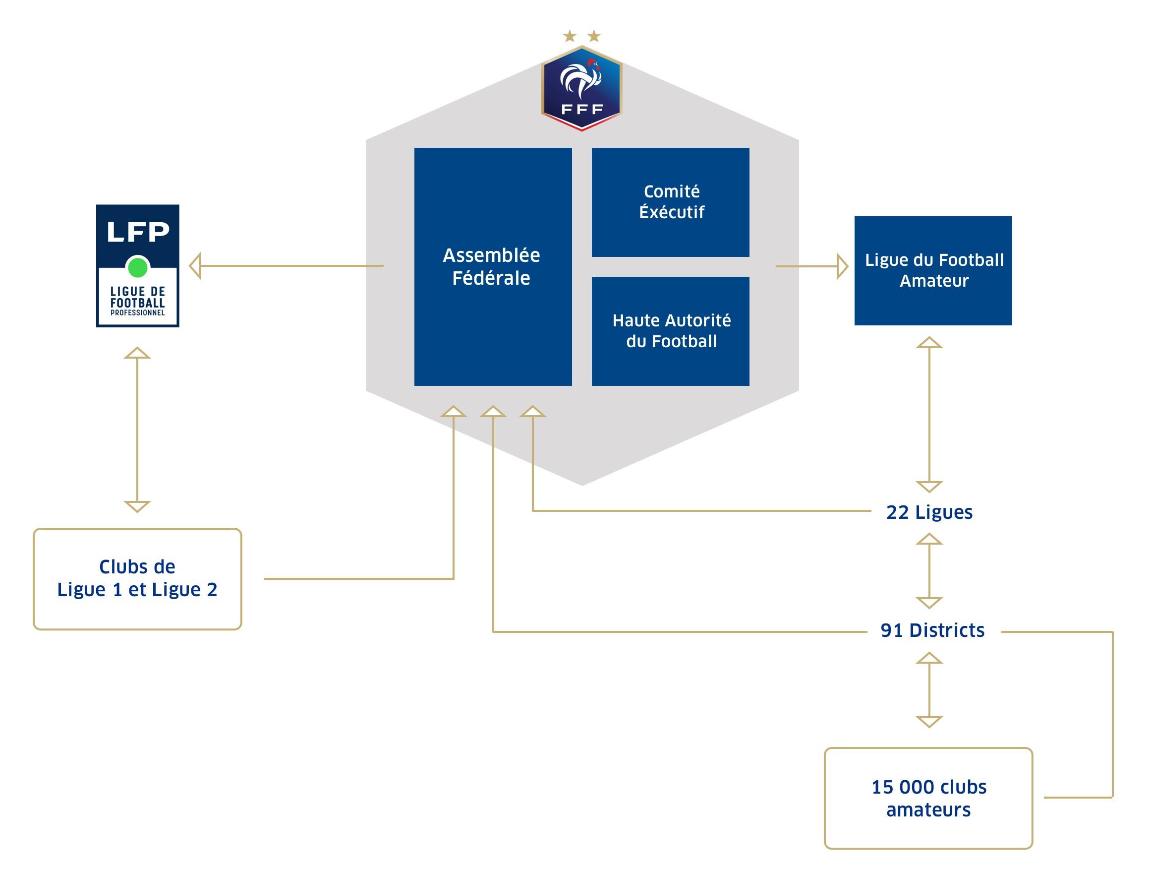 L'organisation du football français